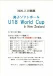 【男子ソフトボール】U18ワールドカップブロック別リーグ戦までの結果です